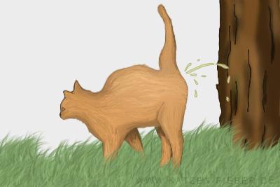 Katze markiert