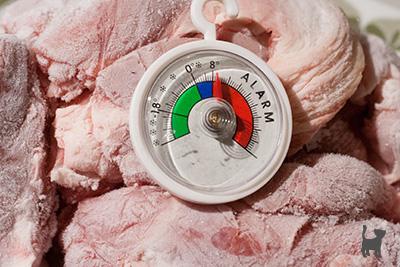 Fleisch und Thermometer